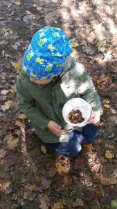 Herbstspaziergang zum Laub und Kastaniensammeln